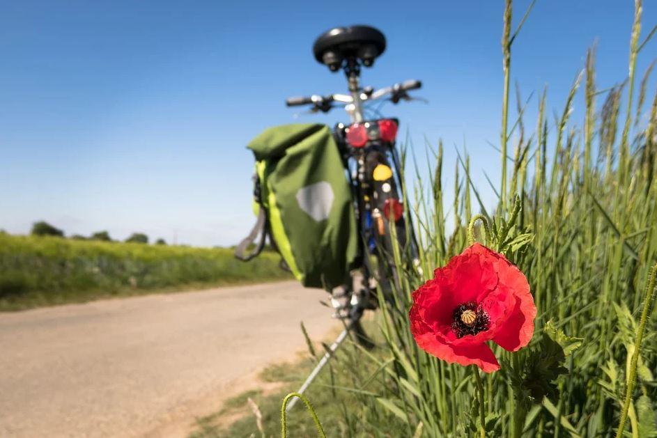 kolo na cestě